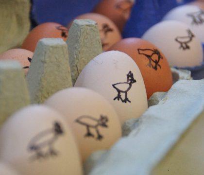 Eier mit Spezialstempel ;-)